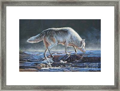 Testing The Waters Framed Print by Deb LaFogg-Docherty