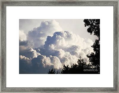 Texas Afternoon Sky Framed Print by Denise Hopkins