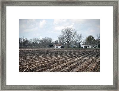 Texas Farmland Framed Print by Teresa Blanton