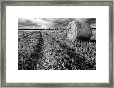 Texas Hill Country Hay Field Framed Print