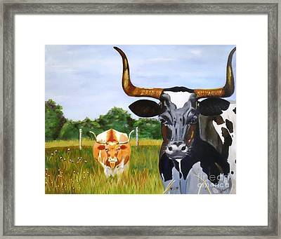 Texas Longhorn Two Some 2 Framed Print by Gina DePasquale