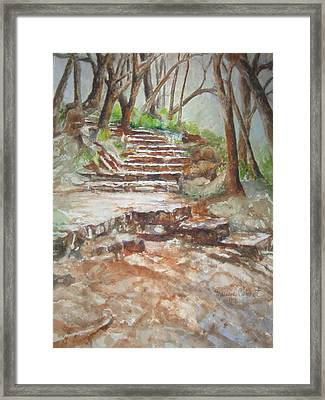 Texas Trail Framed Print