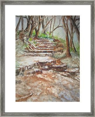 Texas Trail Framed Print