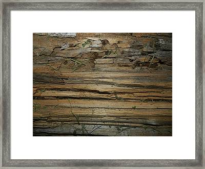 Texture Framed Print by Dennis Leatherman