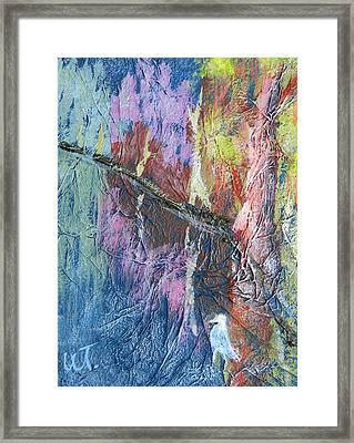 Texture Of Nature 1 Framed Print by Warren Thompson