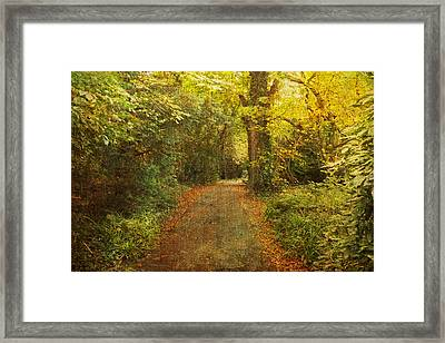 Textured Trees Framed Print