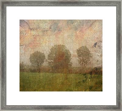 Textured Trees Framed Print by Roni Chastain