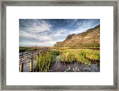 Thai Walk Way Framed Print