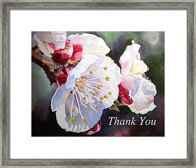 Thank You Card Apricot Blossom Framed Print