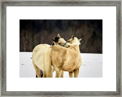 That Loving Moment Framed Print by Gary Smith