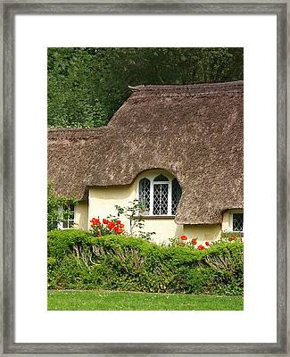 Thatched Poppies Framed Print