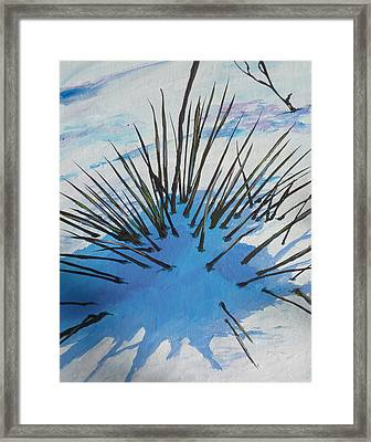 Thaw Framed Print by Sandy Tracey