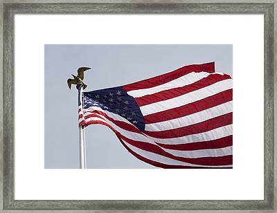 The American Flag Framed Print by Tim Laman