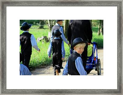 The Amish Boy Framed Print by Dennis Pintoski