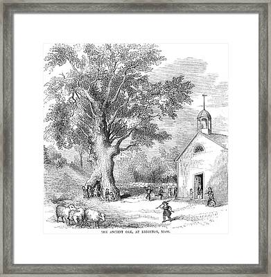 The Ancient Oak Framed Print by Granger