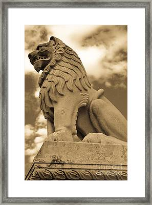 The Angry Lion Framed Print by Syed Aqueel