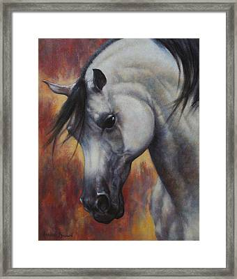 The Arabian Framed Print by Harvie Brown
