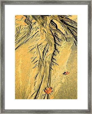 The Art Of Beach Sand Framed Print by Marcia Lee Jones