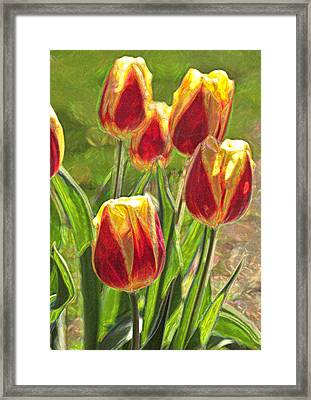 Framed Print featuring the photograph The Artful Tulips by Nancy De Flon