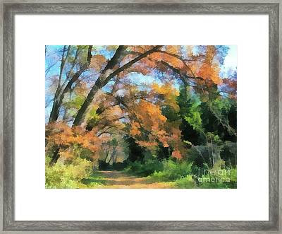 The Autumn Forest Framed Print by Odon Czintos