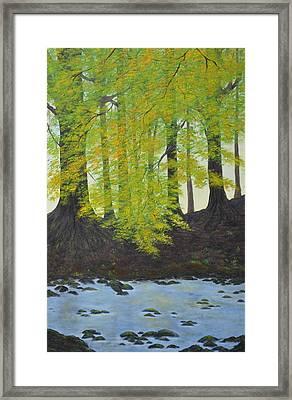 The Autumn Glen Framed Print
