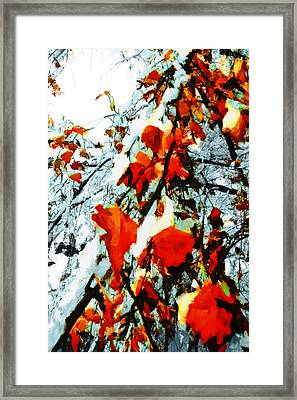 Framed Print featuring the photograph The Autumn Leaves And Winter Snow by Steve Taylor