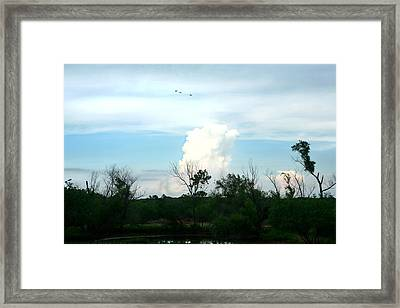 Framed Print featuring the photograph The Back Forty by Lon Casler Bixby