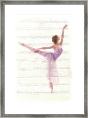 The Ballerina Framed Print by Steve K