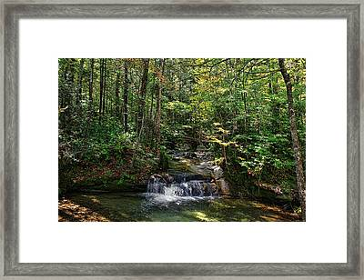 The Basin Framed Print by Lanis Rossi