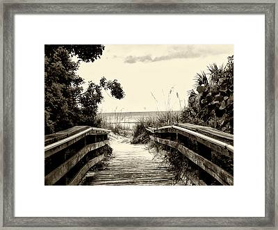 The Beach Path - Clearwater Beach Framed Print by Bill Cannon