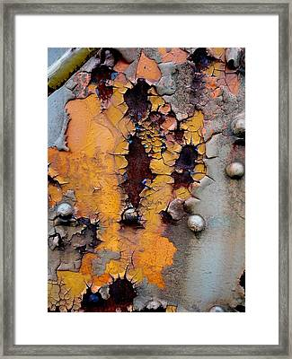 The Beauty Of Aging Framed Print by The Art With A Heart By Charlotte Phillips