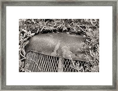 The Beauty Of Rust Bw Framed Print by JC Findley