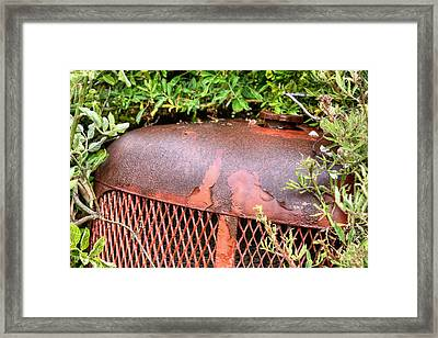 The Beauty Of Rust Framed Print by JC Findley