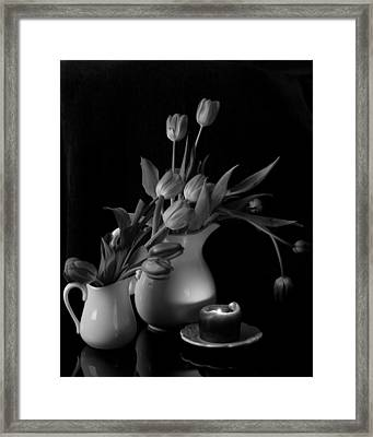 The Beauty Of Tulips In Black And White Framed Print by Sherry Hallemeier