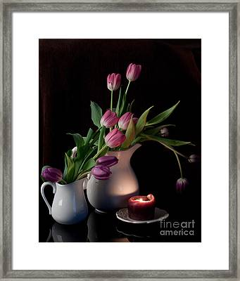 The Beauty Of Tulips Framed Print by Sherry Hallemeier