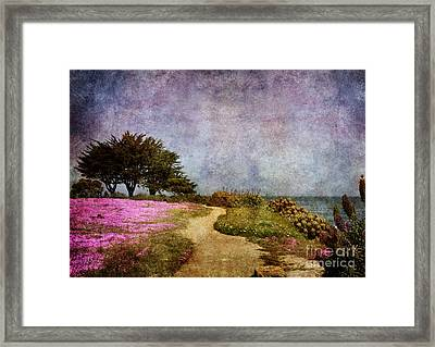 The Beckoning Path Framed Print by Laura Iverson