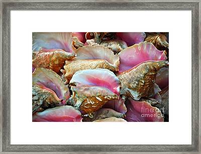 The Beginning Of The End Framed Print by Li Newton