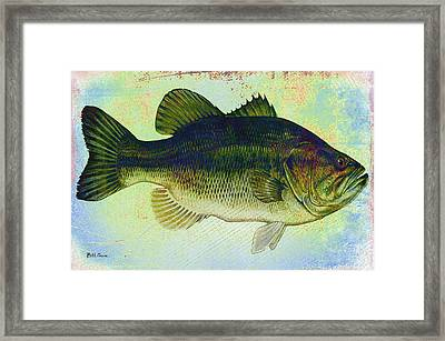 The Big Fish Framed Print by Bill Cannon