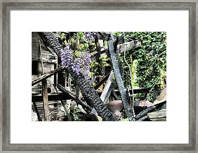 The Big Picture Framed Print