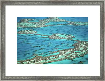 The Big Reef, Whitsunday Islands, Australia Framed Print by Chantal Ferraro