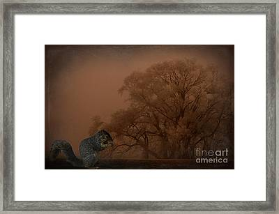 The Big Woods Framed Print by The Stone Age