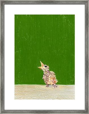 The Birdie Framed Print