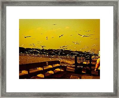 The Birds Scene Framed Print