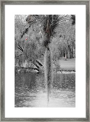 The Bobber Framed Print by Lynda Dawson-Youngclaus
