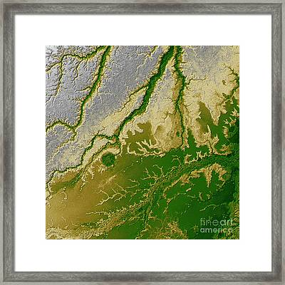 The Bolivian Amazon Framed Print