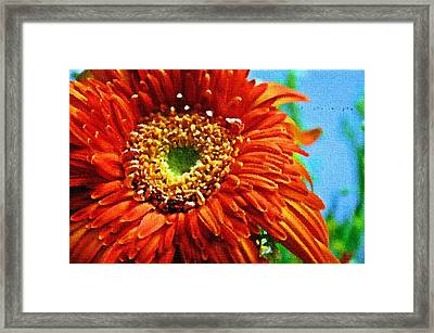 The Bond Of Nature Framed Print by Sanjay Avasarala