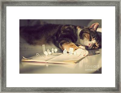 The Bookeeper  Framed Print by Catherine MacBride