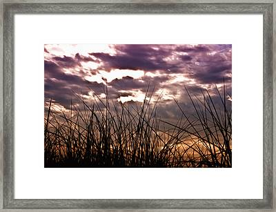 The Brewing Storm Framed Print by Bill Cannon