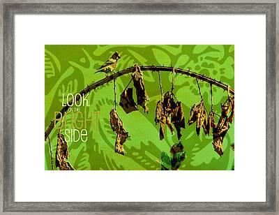 The Bright Side Framed Print by Bonnie Bruno