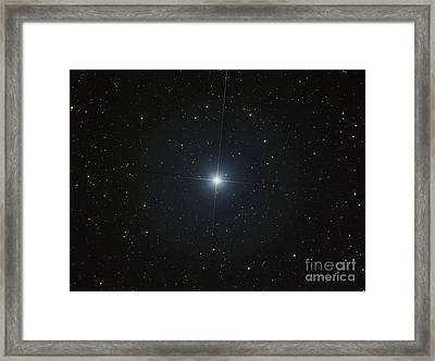 The Bright White Star Castor Framed Print by Filipe Alves